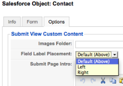 jsf-submit-field-label-place-popup.png
