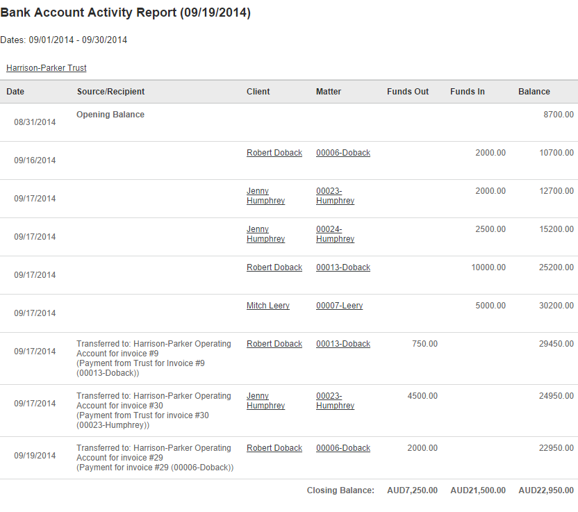 Bank_Account_Activity_Report_002.png