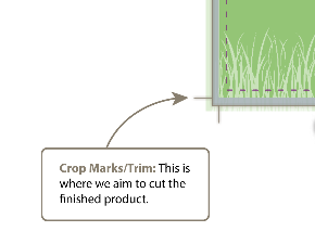 crop_area_tip_PAGE.png