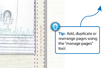 manage_pages_tip_PAGE.png