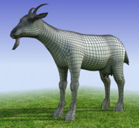 goat_1.png