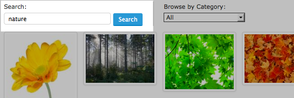 Stock image search options