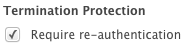 termination_protect_checkbox.png